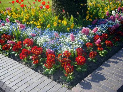 イギリス国内旅行で見た花壇