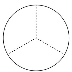 3分割された円